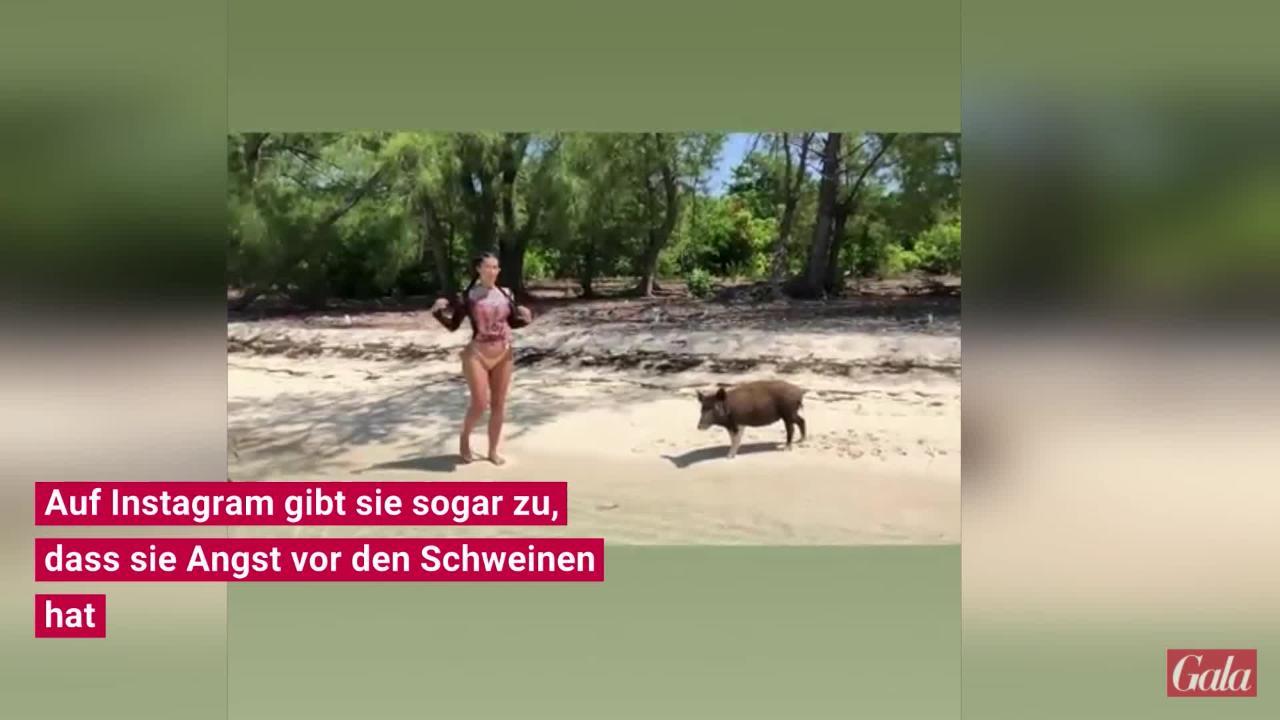 Kim Kardashian: Schweine-Attacke am Strand bringt sie aus der Fassung